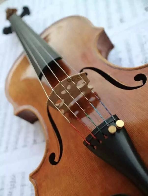 五弦中提琴