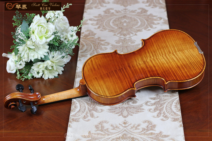 STV-850 Copy of Strad 1716