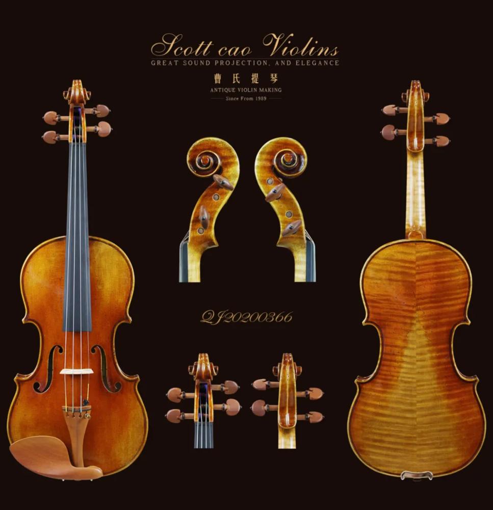 底板为拼板的提琴