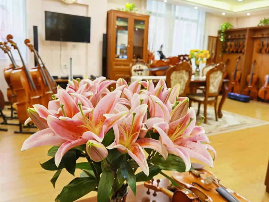 琴界网·曹氏提琴广州展厅